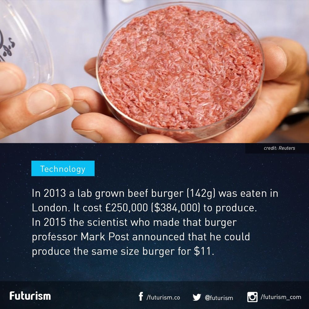 Image (click to enlarge) of lab-grown meat.