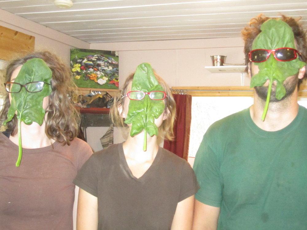 spinach face 009.JPG