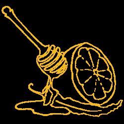 lemon honey cayenne kombucha portland office