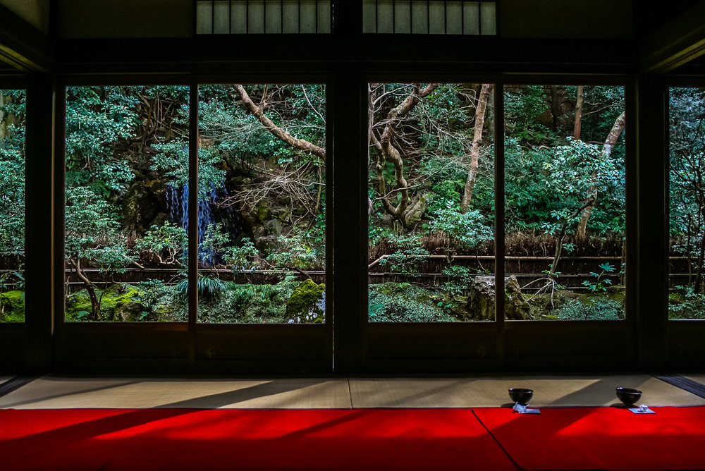 landscape_Japan_tea_IMG_4552.jpg