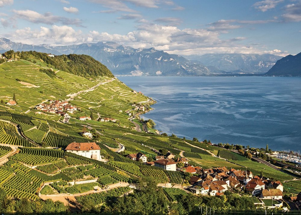 At 1,977 acres, Lavaux is the largest contiguous wine region in Switzerland.    Photo by Aurora Open/Getty Images