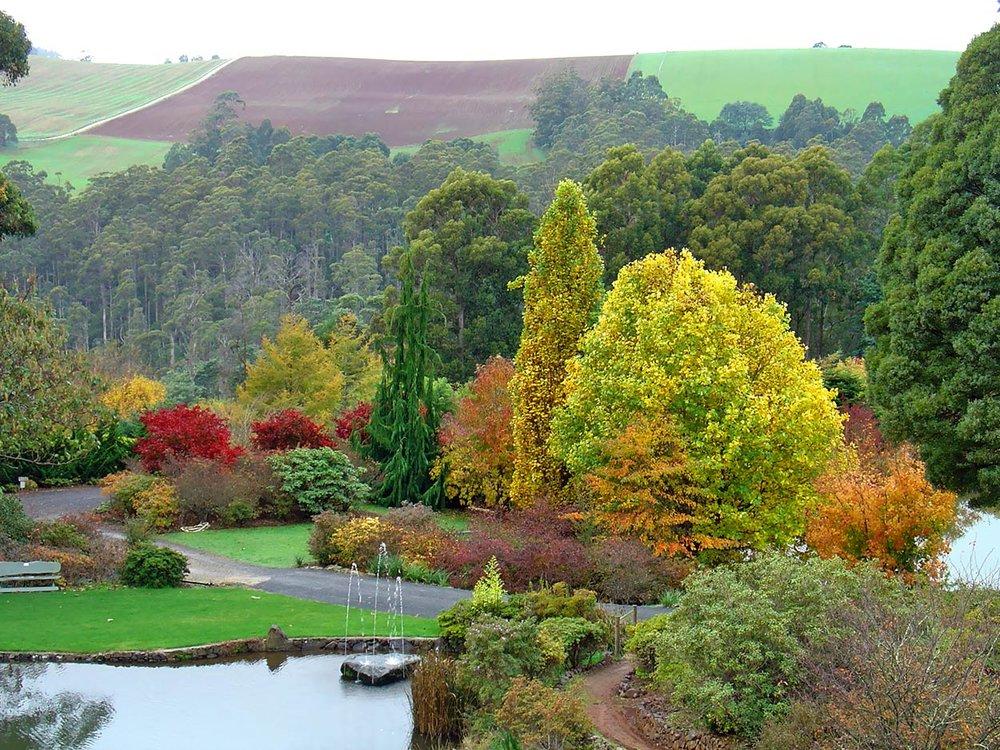 autumn---dsc01101_10322574925_o.jpg