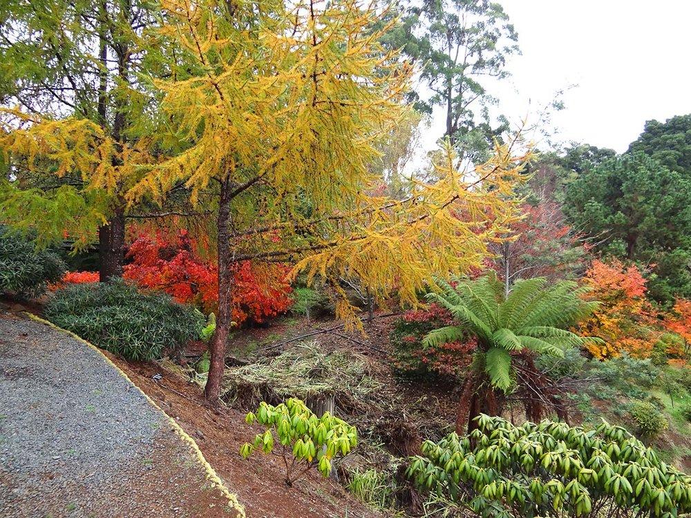 autumn---dsc03018_10322544054_o.jpg