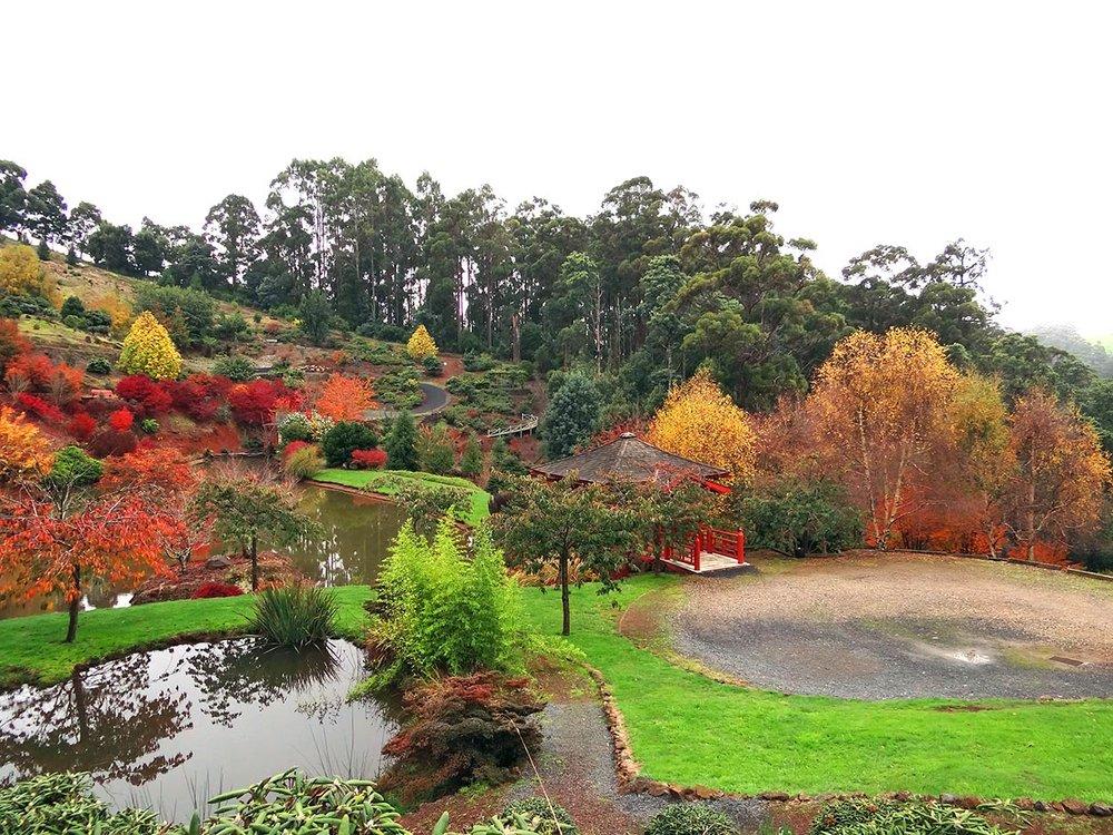autumn---dsc03020_10322526614_o.jpg