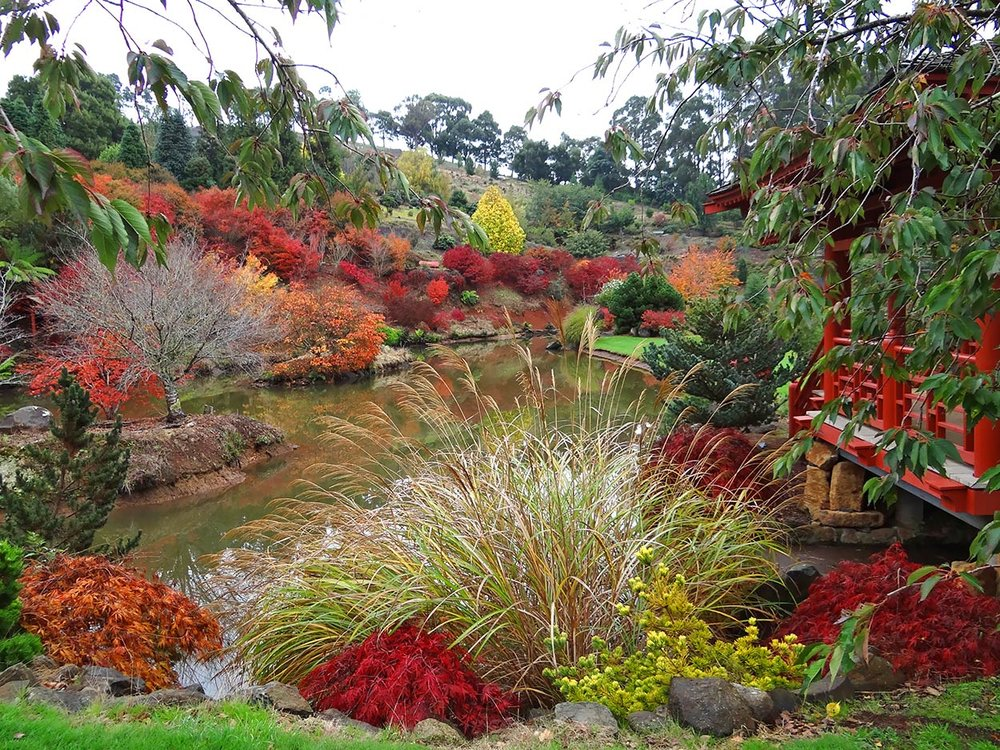 autumn---dsc03022_10322510194_o.jpg