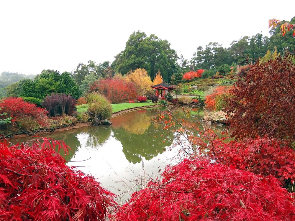 autumn---dsc03046_10322510465_o.jpg