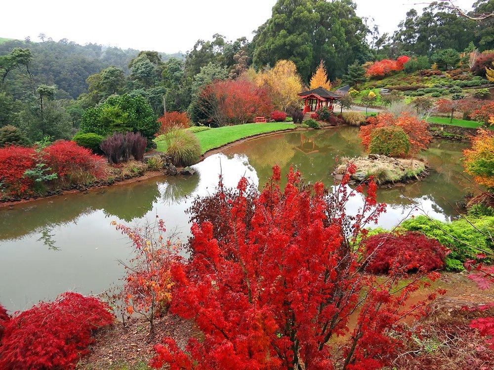 autumn---dsc03084_10322439664_o.jpg