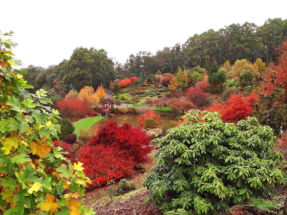 autumn---dsc03092_10322589463_o.jpg