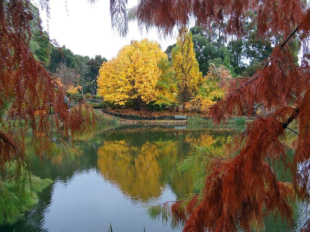 autumn---dsc06887_10322614075_o.jpg