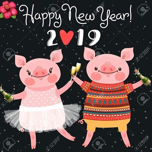 Happy new year everyone! May 2019 be a year filled with joy, laughter, and happiness! . . . #yyc #yycliving #realtor #2019 #happynewyear #yearofthepig #betterthanlast