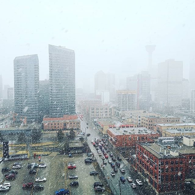 Welcome back Winter~ . . . #yyc #yycweather #snow #spring #april #calgaryweather #blizzardinapril #white #highrise #guardianview #28floor