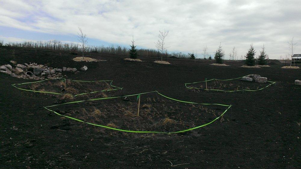 Quadrat Soils