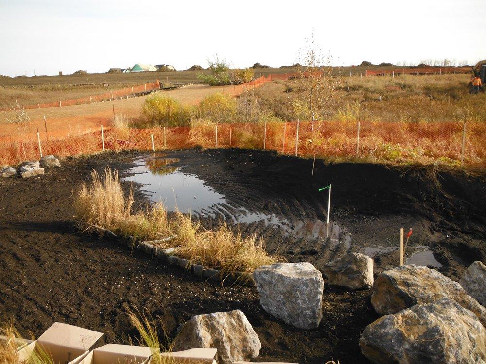 Bioswale Soil