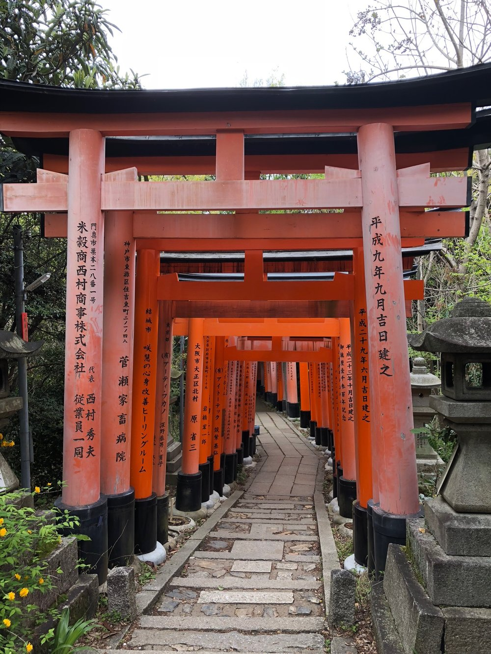 Fushimi Inari-taisha torii gates in Fushimi-ku, Kyoto