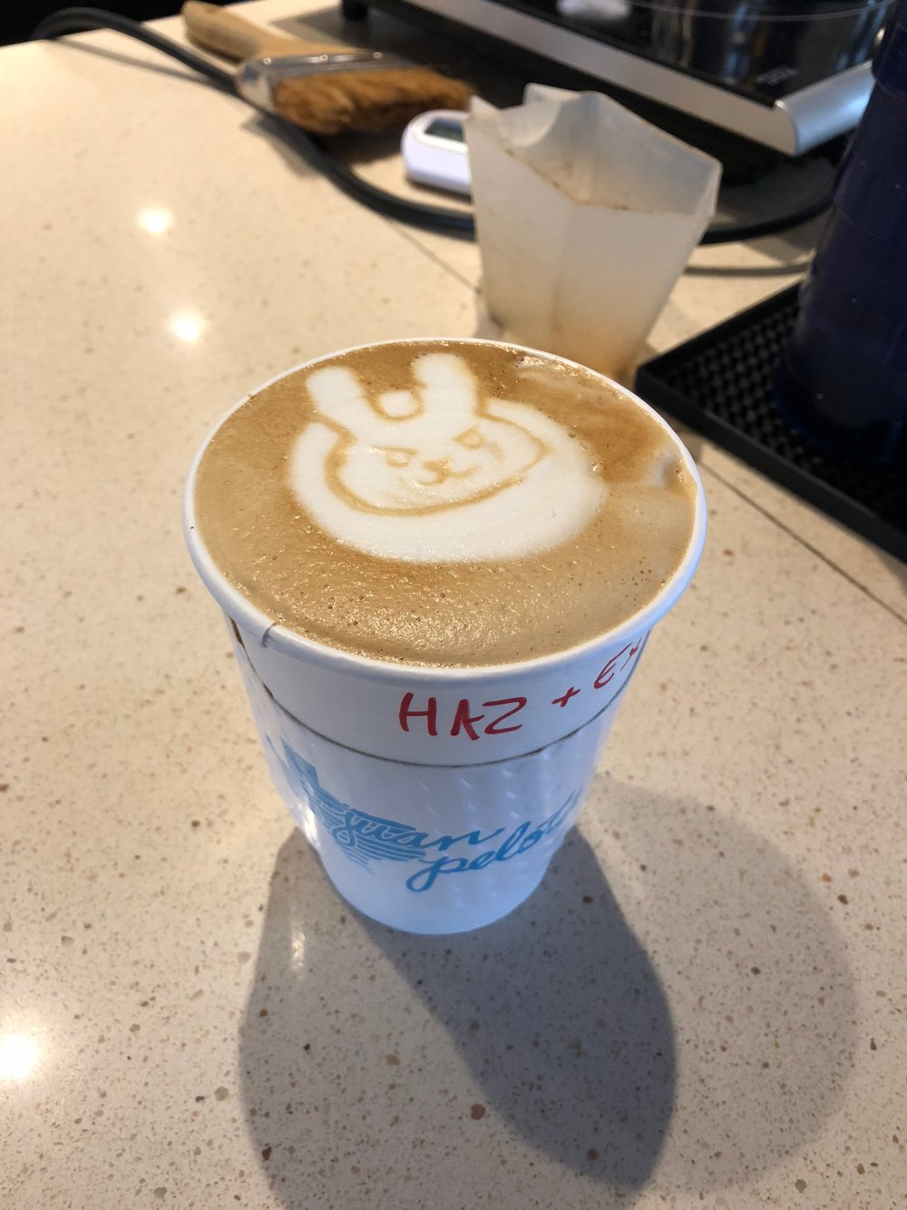Latte art of D.Va from Juan Pelota Cafe in Austin, Texas