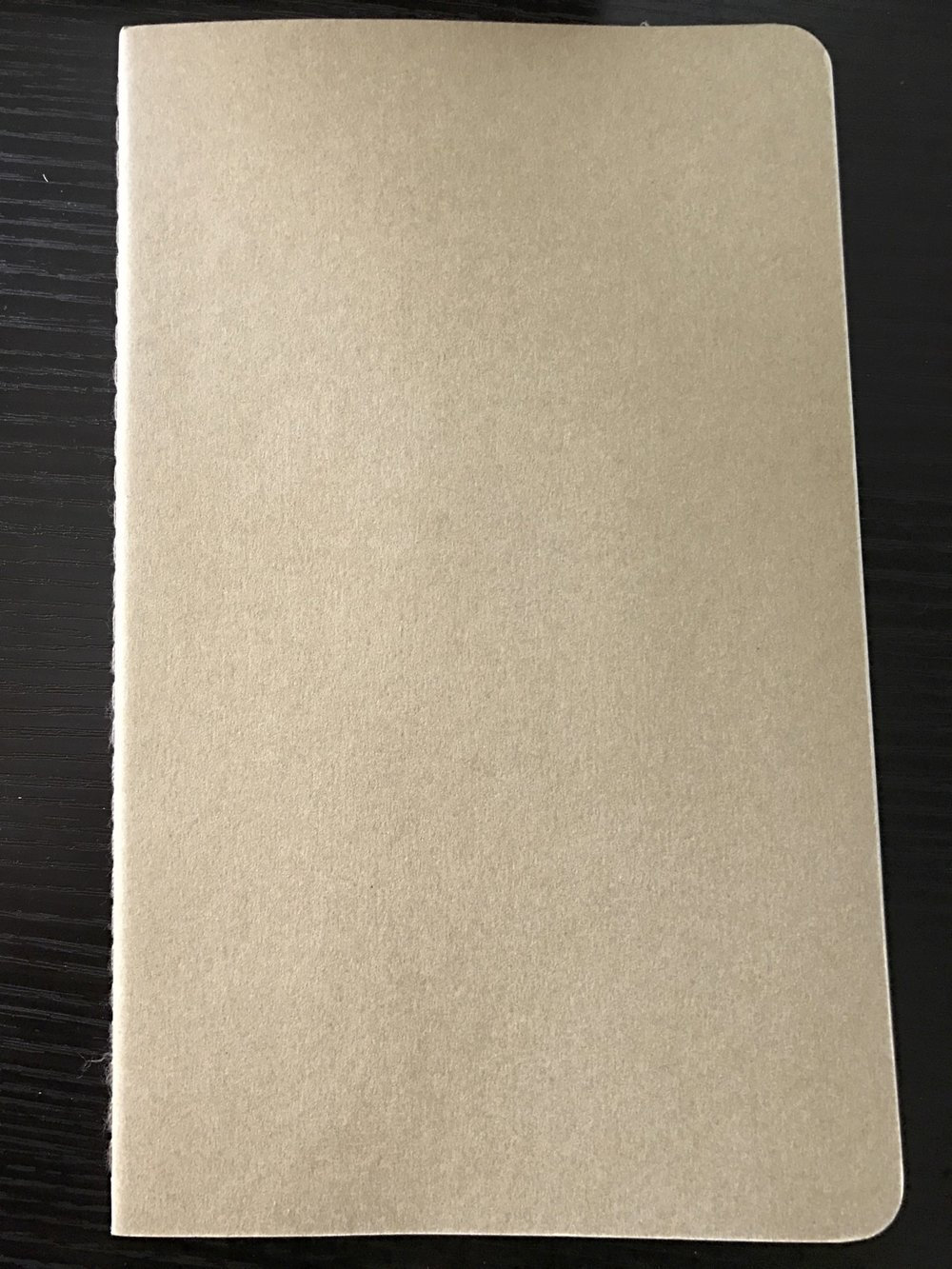The Moleskine notebook has the most generic appearance.