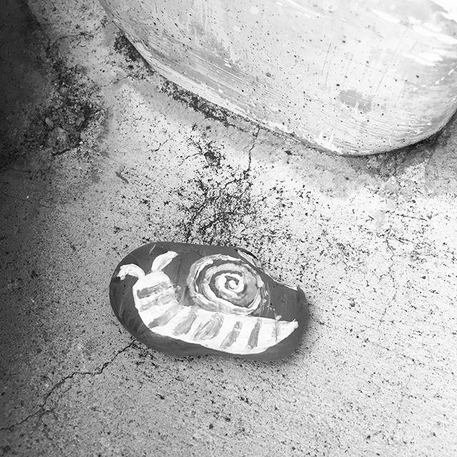 Found this at my door this morning!  It's soooo cute!!! Thanks Bribie Rocks 4507 #Bribierocks #snail. #paintedrocks #rock #fitnessstartshere #fitnessbribieisland