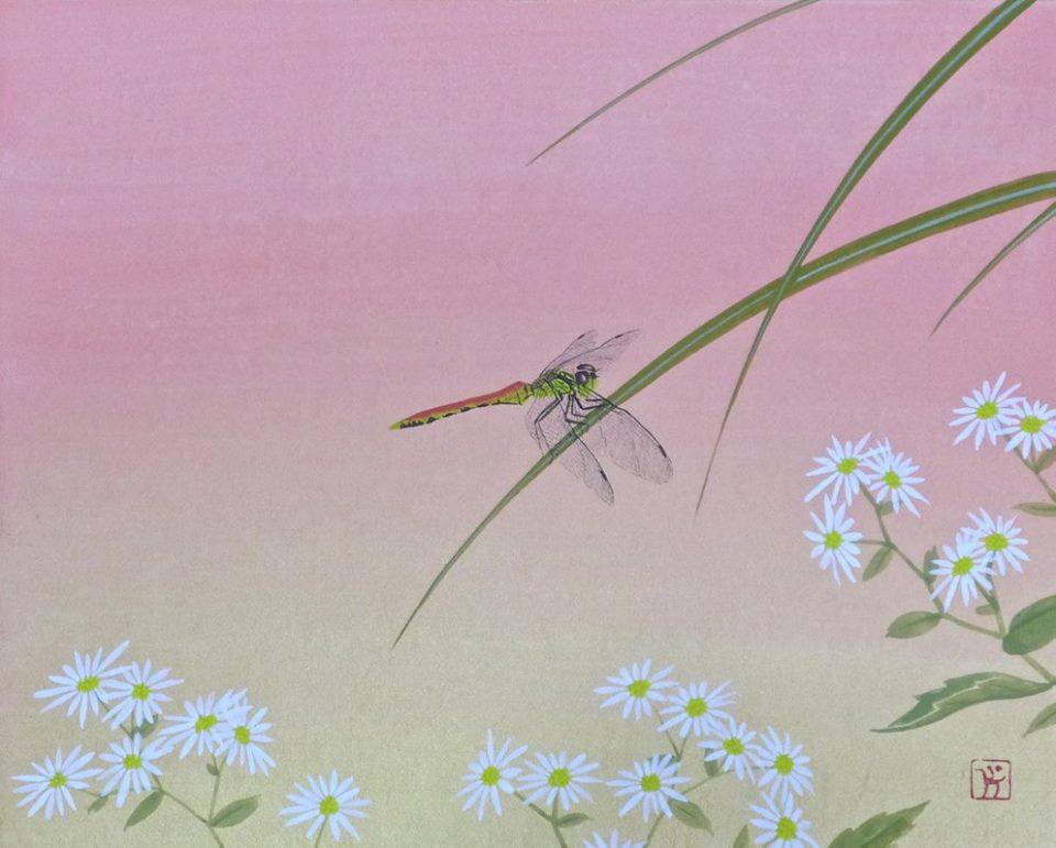 Biotop赤蜻蛉.jpg