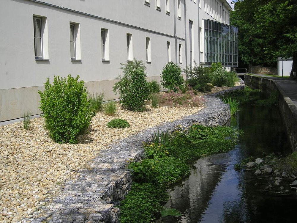 Renaturierung Mühlbach Wiener Neudorf