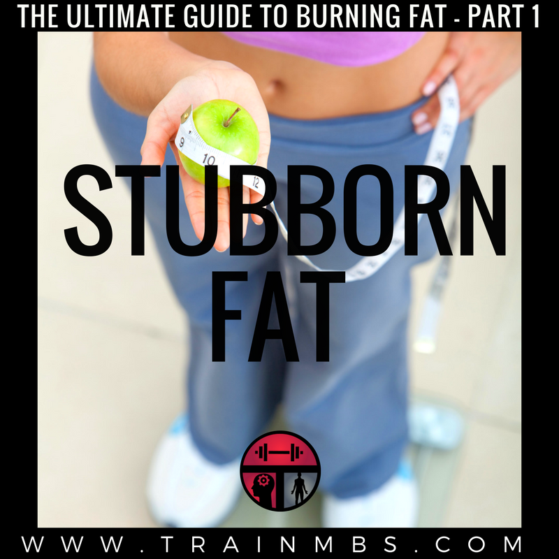 The Ultimate Guide To Burning Fat Part 1 Stubborn Fat Train