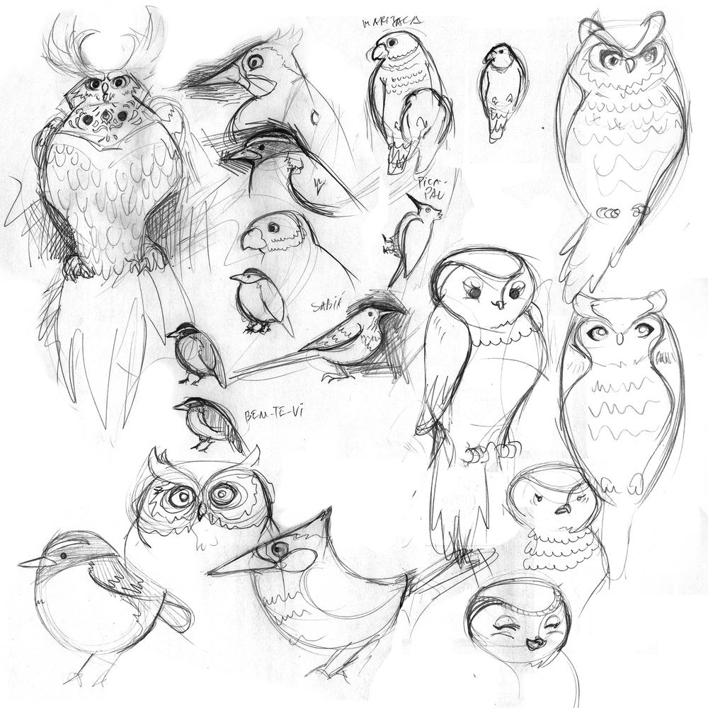 feijaozinho-sketches.png