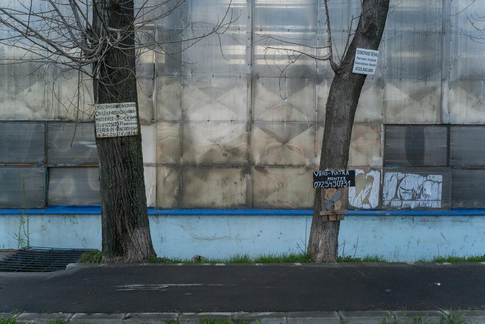 mosaic-04.jpg
