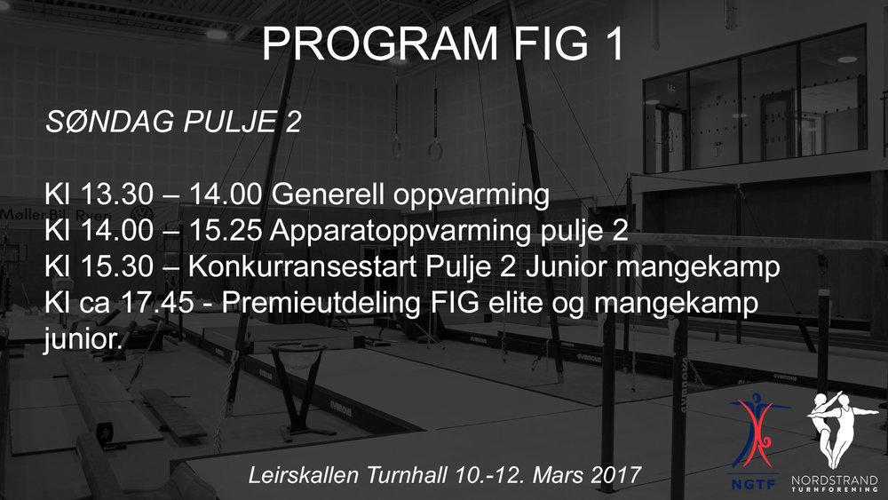Program-FIG-1-Søndag-Pulje-2.jpg