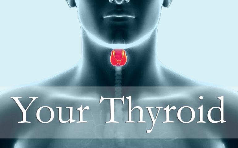 your-thyroid.jpg