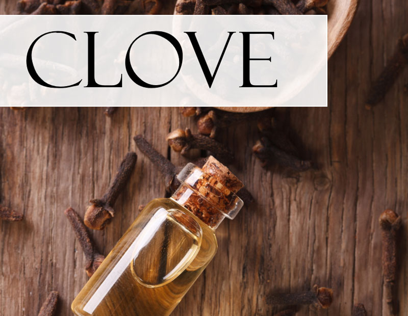 cloves on a wooden spoon with a vial of clove essential oil