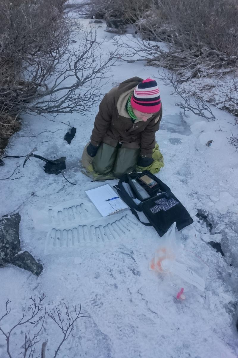 Maria Myrstener winter fieldwork 800x1200.jpg