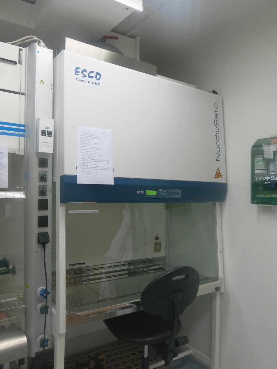 Esco Class II BSC-03.JPG
