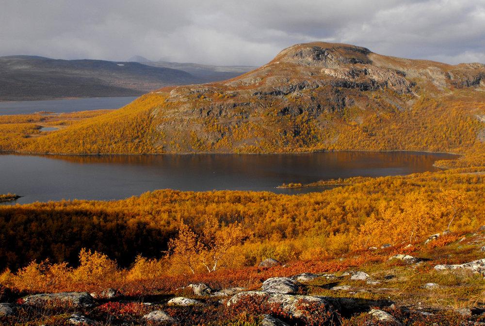 landscape_Kaarlejarvi.jpg