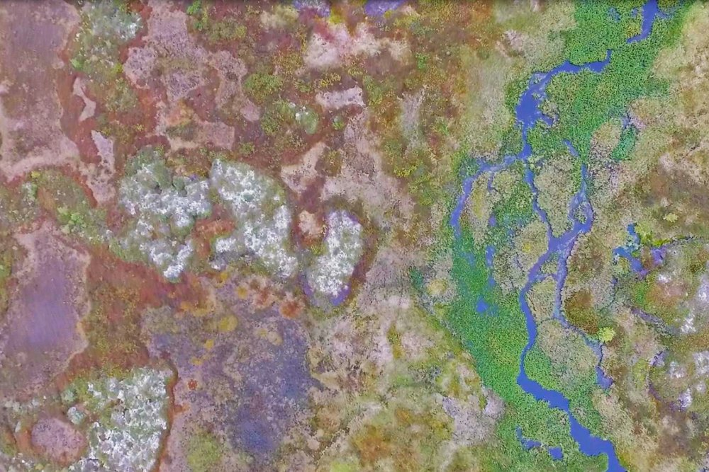 Western Siberia stream in a permafrost landscape 1200x800.jpg