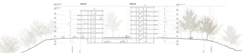 Offizin für Architektur_offizin-a_offizina_Projekte_Wohnen_Reichenbachstrasse_Schnitt 1.jpg