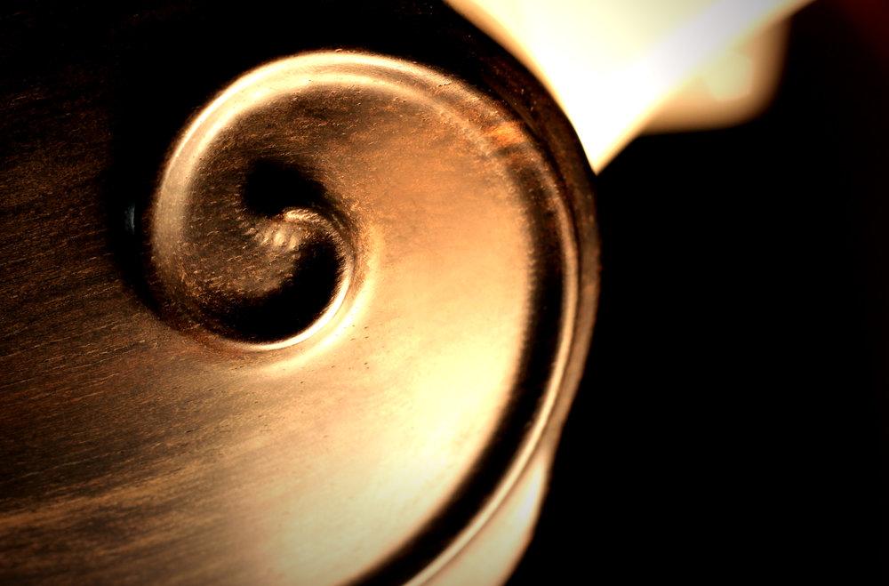 15. Détail 4. Relief Fibonacci sur fleur rotative de butée arrière. Ébène de Makassar.jpg