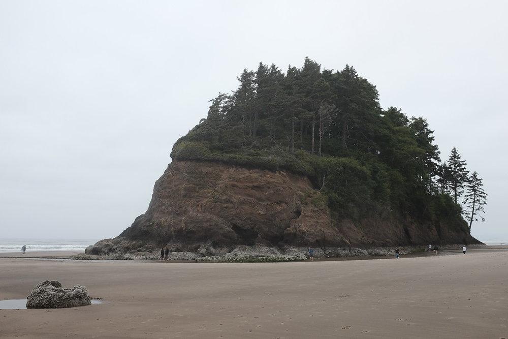 OregonCoast_57.jpg