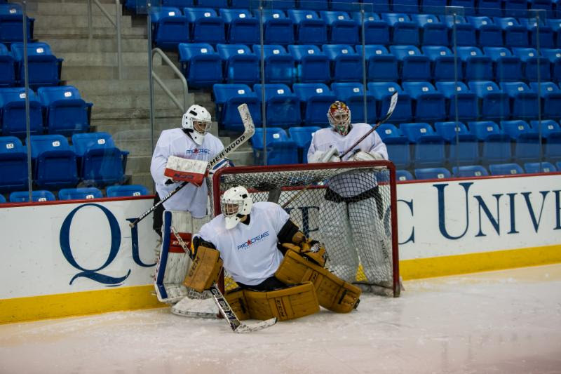 Feature Article Written By Jared Waimon Procrease Goaltending