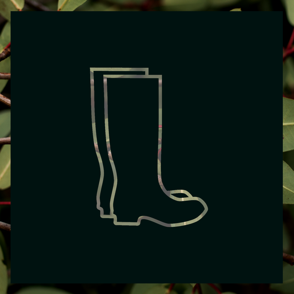 Explore-Reuthes-boots.png