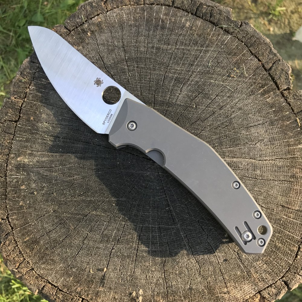 This is a Spyderco Spydiechief with rust proof LC 200N steel.