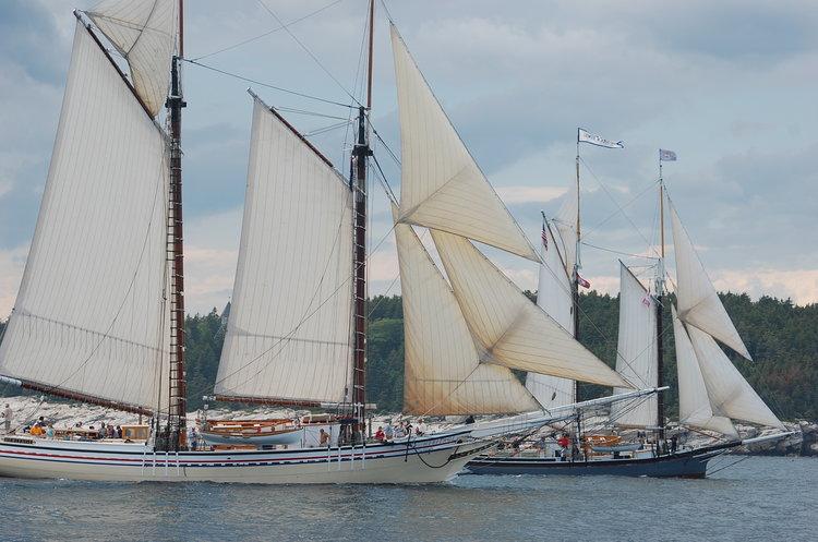 Windjammers Arrival