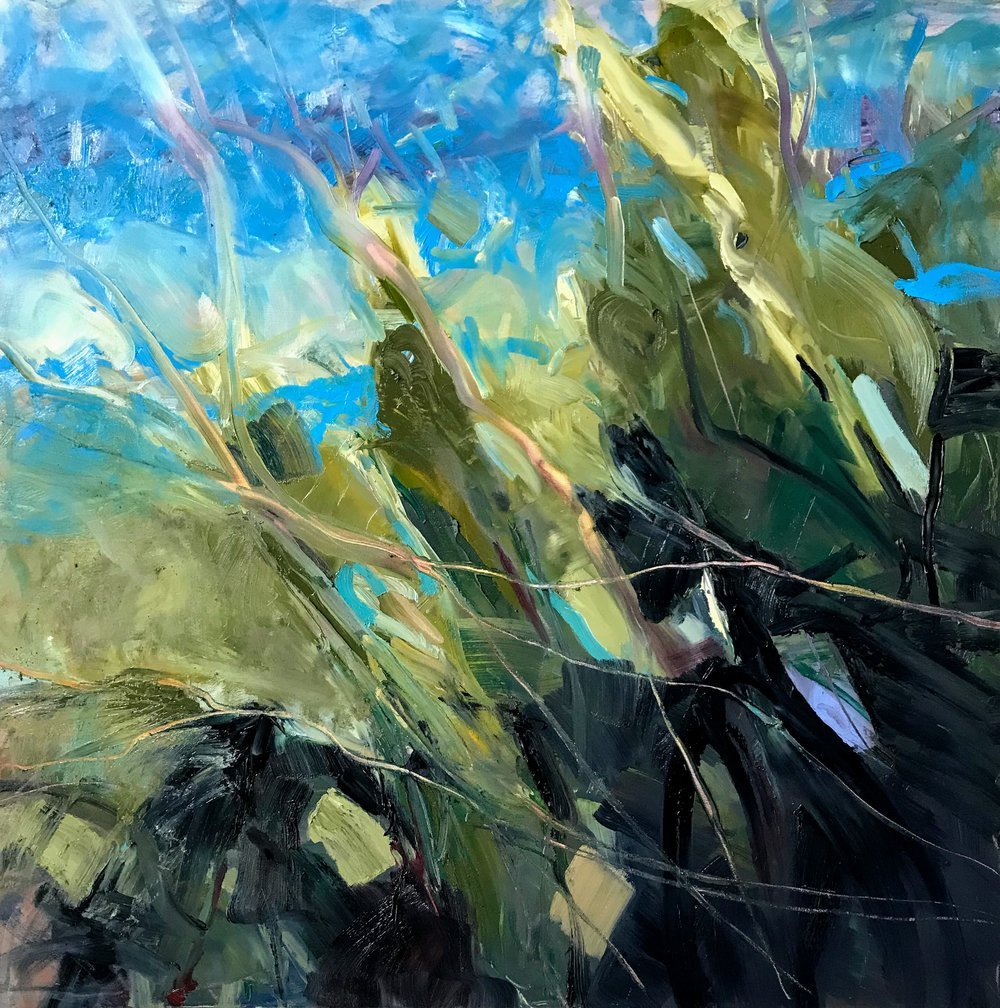 "The Tangle   by Sally Veach, Oil on Canvas, 36"" X 36"", Available at  THE HAEN GALLERY  in Asheville, NC"