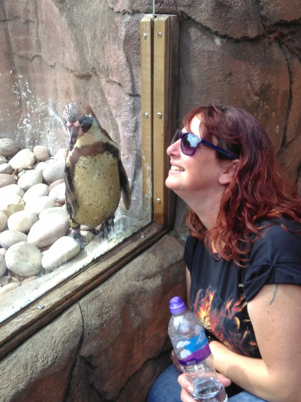 Di making friends with a penguin