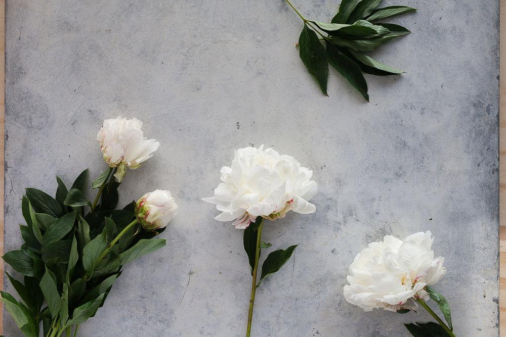 Florist0036.jpg