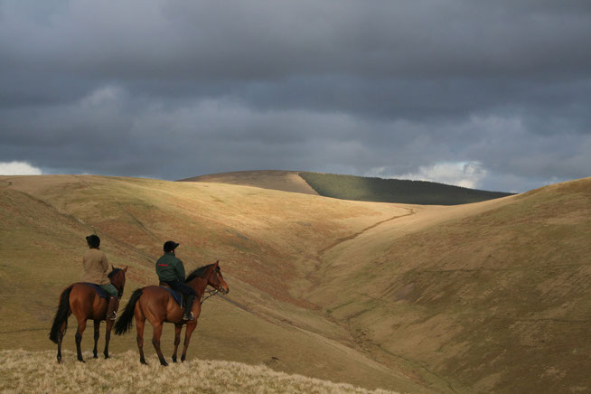 Horse riders in the Cheviots - one visitor segment to the Otterburn Ranges