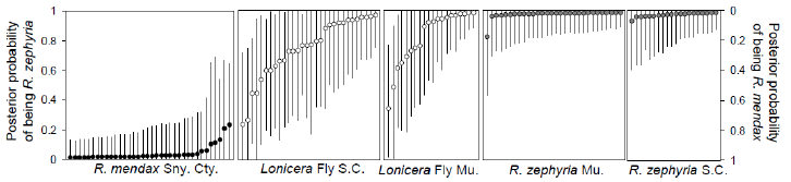 Figure S9.2.  Evidence that the  Rhagoletis  fly on  Lonicera  has a hybrid origin between  Rhagoletis  flies on native plant species; blueberry ( R. mendax ) and snowberry ( R. zephyria ). The graphs show the probability based on genetic markers that individual flies (points) belong to the  mendax  or  zephyria  groups. Intermediate values for the  Lonicera  flies indicate that their genome is a combination of genes from the two separate species (Reprinted by permission from Macmillan Publishers Ltd: Nature (Schwarz  et al.  2005), ©2005).