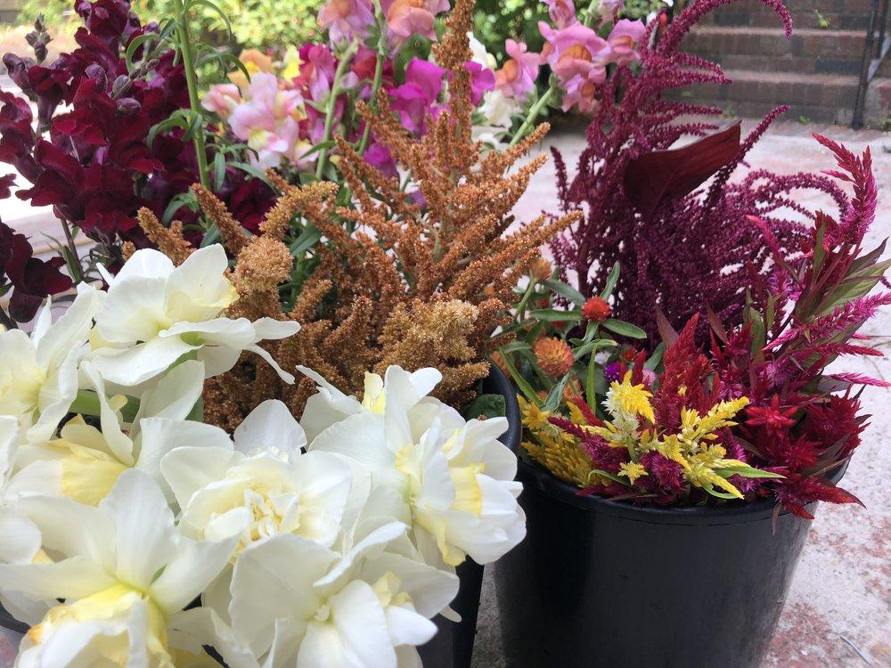 buckets of flowers.jpg