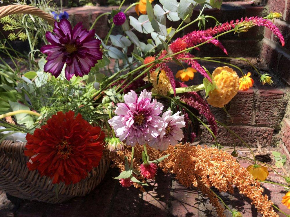 basket close up.jpg