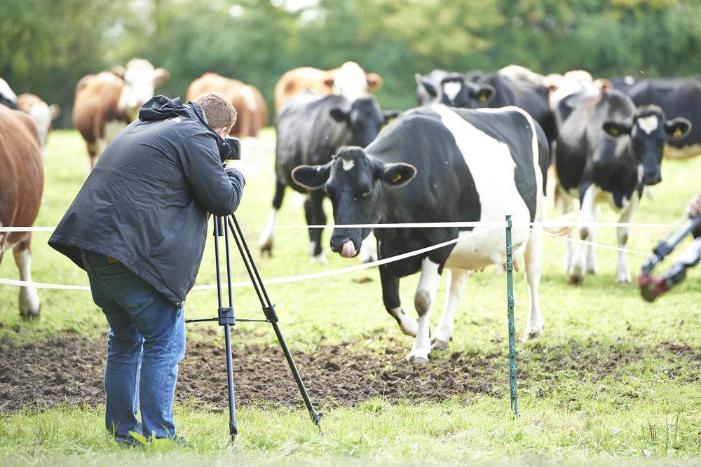 BBC Filming 12.jpg