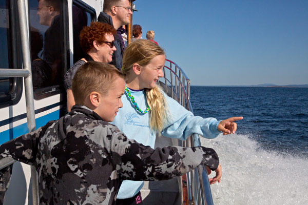 whale watching, port townsend, transportation