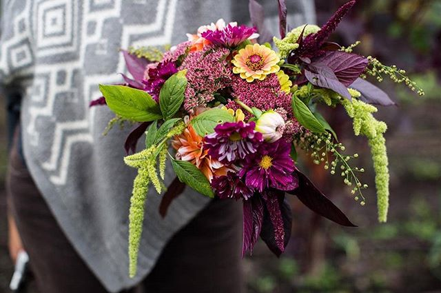 We LOVE this autumnal bouquet grown & designed by @flourishflowerspt 💐 This beauty was created with love featuring amaranth, zinnias, and other #PNW fall foliage. Beginning today at @fortworden check out the first ever Flowers as Art Show, featuring the lovely Flourish Flowers. This rotating showcase of local flower farmers across Jefferson County lasts until Friday, October 12th! // 📸 @meljentzsch #weddingsacrossthesound #flourishflowers #bridalbouquet #fortworden #weddinginspo